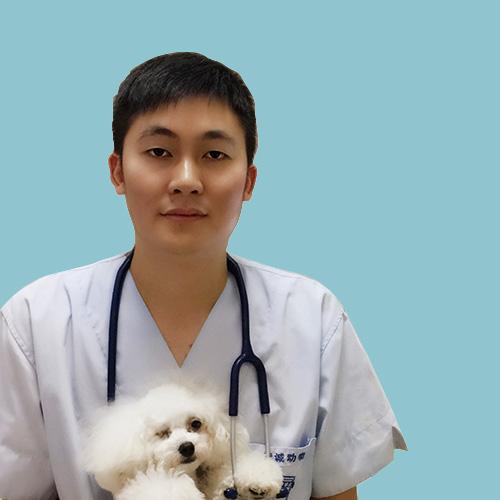 王强宠物医生